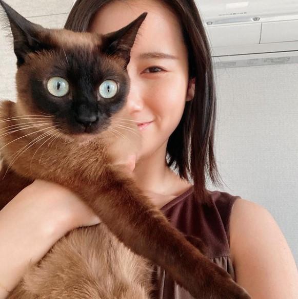 森川夕貴アナのインスタで猫