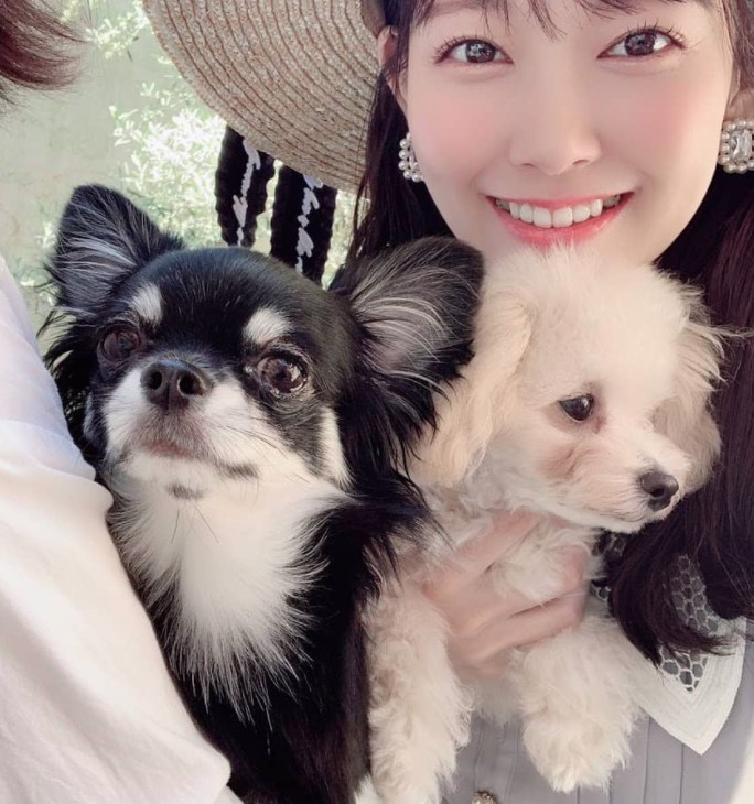 渡辺美優紀の愛犬